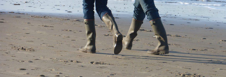 Strandwandelaars 05